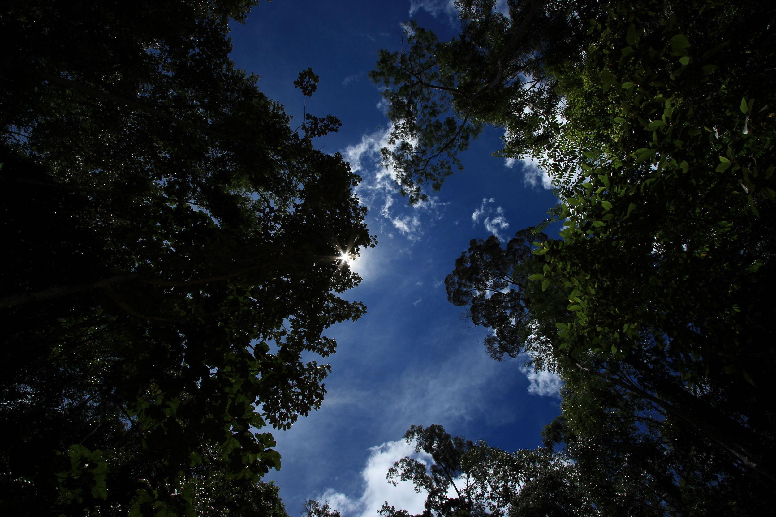 Pinjam Uang Area Kalimantan, Baca Dulu Disini